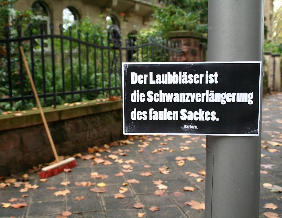 laubblaeser_barbara